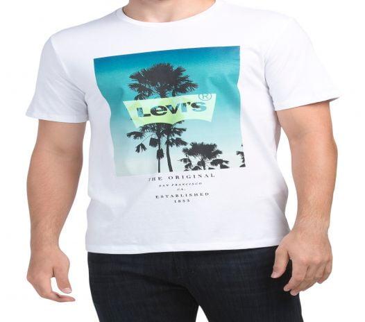 Áo Thun Nam Levi's Short Sleeve Graphic T-Shirt White Multi