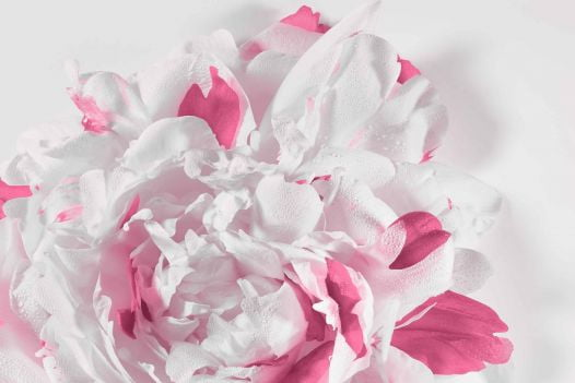Nước Hoa Nữ Dior Miss Dior Eau De Parfum