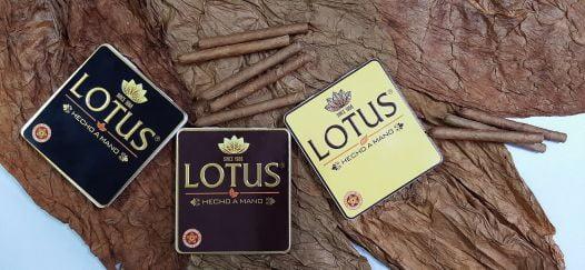 Cigar Lotus Mini No2 (Hộp sắt 10 điếu vàng)